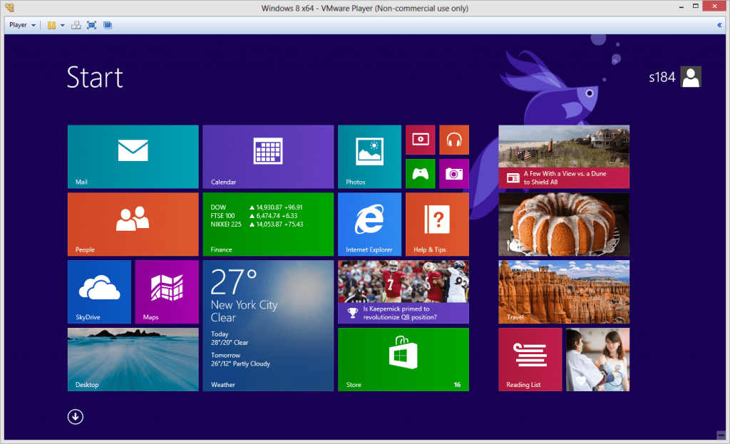 VMware Player 6 with Windows 8.1