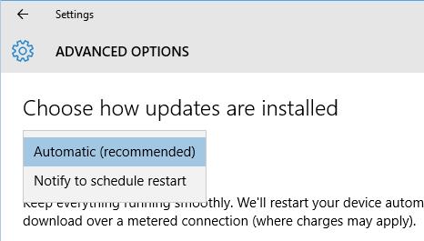 Windows 10 - Windows Update options