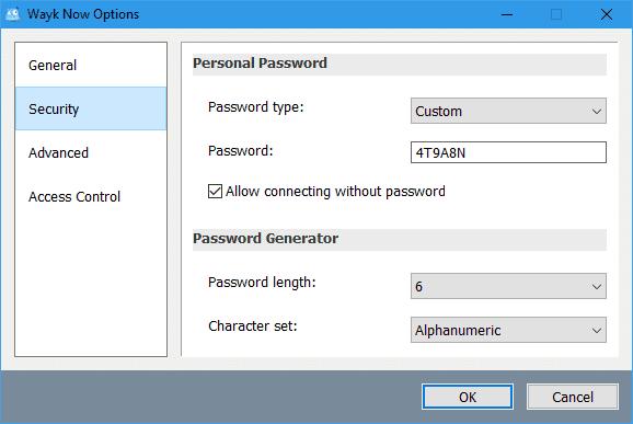 wayk-now-options-security